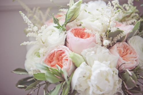 Garden Rose And Peony peonies vs garden roses – dedicated to flowers