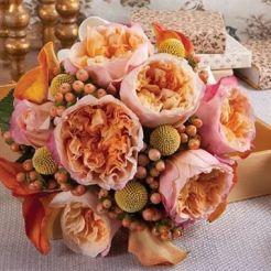 Rose Edith DA