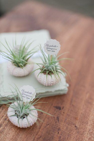 wedding-trends-air-plants-48-630x947