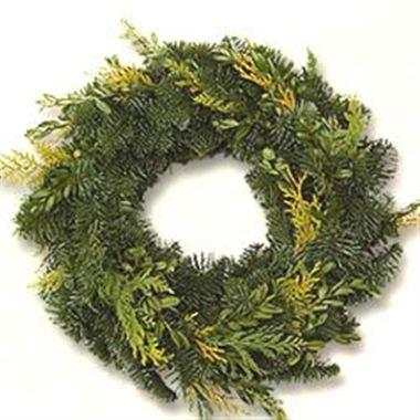 Spruce Rings